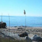 MBSR Shoreline for Fall